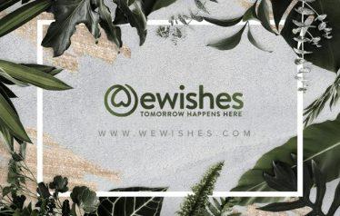 we wish